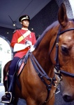 mounted guard