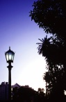 lamp post calls for blue