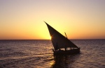 felucca sailing to fishing spots